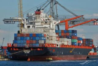 Diana Containerships announces time charter contract for mv Domingo with CMA CGM