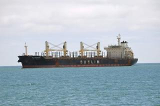 Bulk carrier DL Marigold ordered to leave New Zealand after discovery of dense biofouling
