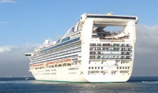 CentrePort's record cruise ship season hits a new milestone with the 100th vessel visiting Wellington, NZ