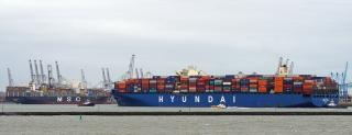 HMM to Compete with MSC for Hanjin Shipping's Long Beach Terminal