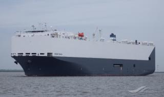 Höegh proves perfect fit for out-of-gauge cargo