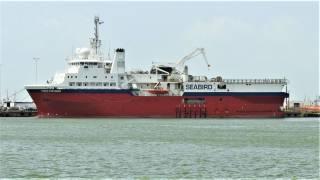 SeaBird's OBN surveys in West Africa canceled due to coronavirus