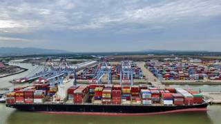 Cai Mep International Terminal welcomes the first maiden call of TP17 service deployed by 2M Alliance