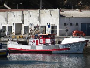 Photo of BRANCA DE SAGRES ship