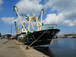 Photo of Z47 DE MARIE LOUISE ship