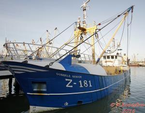 Photo of Z181 DUBBELE SENIOR ship