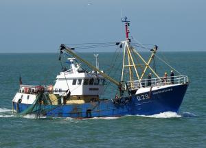 Photo of O29 BROODWINNER ship