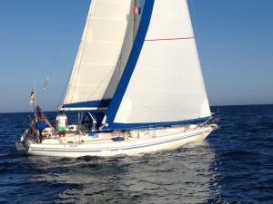 Photo of LADYBLUE ship