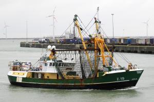 Photo of Z19 SONJA ship