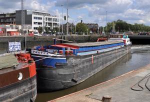 Photo of PROTEA- ship