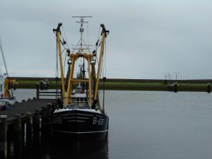 Photo of B 65 ARTEVELDE ship