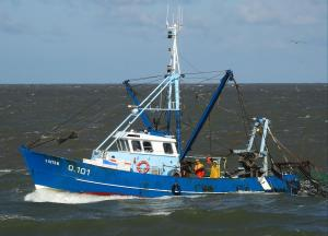 Photo of MFV O101 FISTON ship