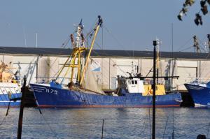 Photo of N79 WARRIOR ship
