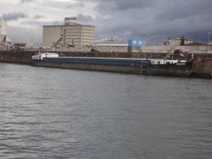 Photo of TAMARIS ship