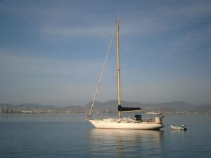 Photo of LADY PEPA ship