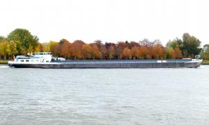 Photo of NEW YORK CITY ship