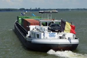 Photo of PALOMINO ship