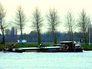 Photo of RONITA ship