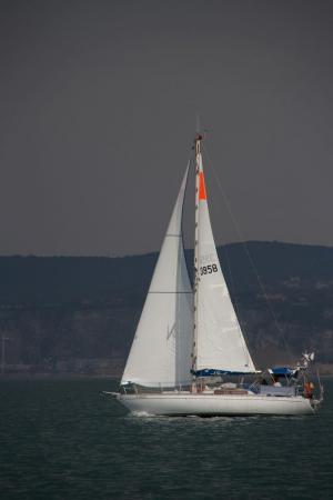 Photo of TOTONA ship