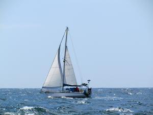 Photo of BOXING-KANGAROO ship