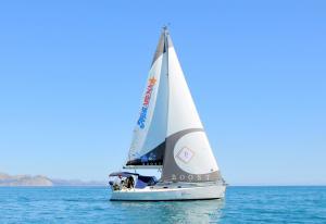 Photo of BAUXA ship