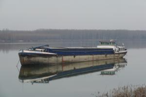 Photo of GEREZIM ship