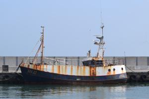 Photo of SH12 VENUS ship