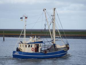 Photo of PIROLA ship