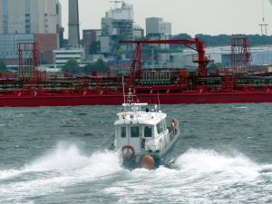 Photo of BRUNSWIK ship