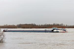 Photo of WOLFROSE ship