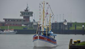 Photo of HAUKE ship