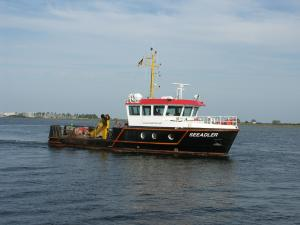 Photo of SEEADLER ship