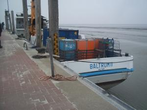 Photo of BALTRUM 2 ship