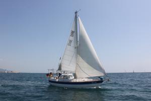Photo of BEL-AMI ship