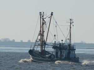 Photo of JAN BRUHNS ship