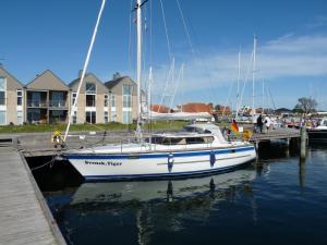 Photo of SY SVENSK.TIGER ship