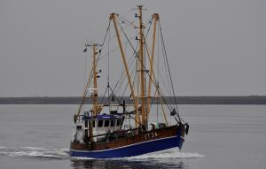 Photo of KAROLIN ST24 ship