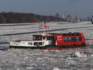 Photo of BLANKENESE ship