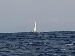 Photo of BIENCHEN 5 ship