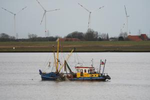Photo of ALINA CHARLOTTE ship
