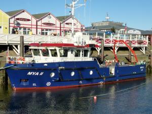 Photo of MYA 2 ship