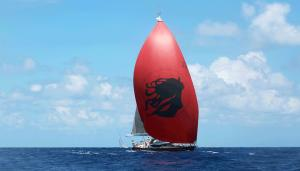 Photo of RED CAT ship