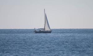 ODD SEA (IMO N/A) Photo
