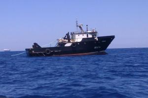 Photo of IRMINIO ship
