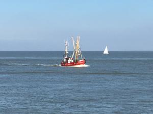 Photo of SC 20 WIKING ship