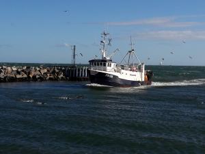 Photo of FN135 CARMICH ship