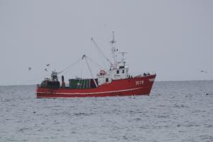 Photo of H 591 LINE ship