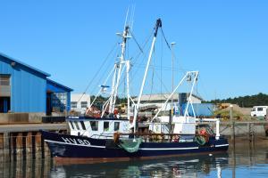 Photo of HV 80 FRU HELLESOE ship