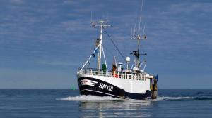 Photo of HM 119 BLUE OCEAN ship