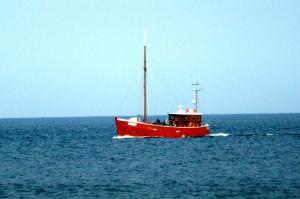 Photo of M/S AMIGO ship